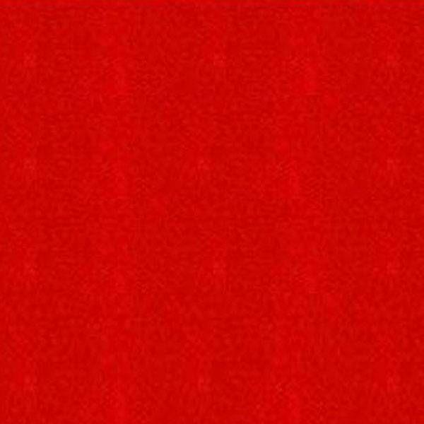 Arizona pool 160 red