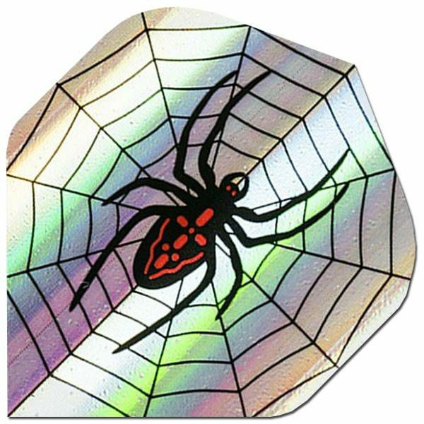 Holographic 2D Standard Spider On Web