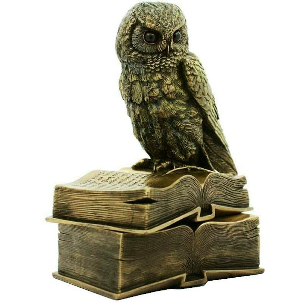 Owl & Box 17 cm