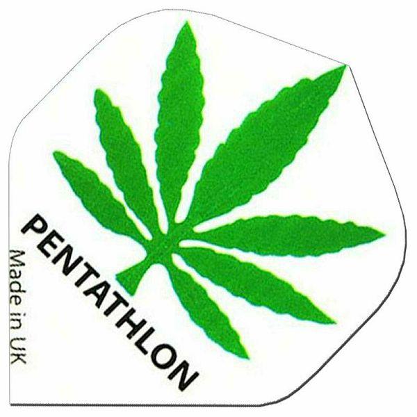 Pentathlon Standard Cannabis White