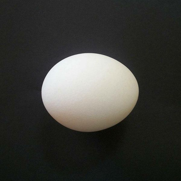 Plastično jaje