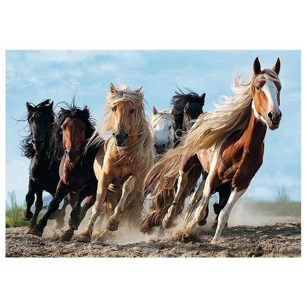 Puzzle Galopping Horses