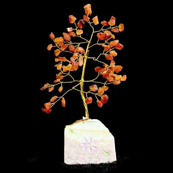 Stablo Karneol