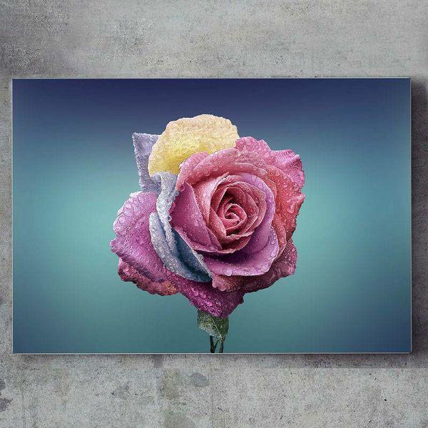 Super slika Rose 60 x 40 cm