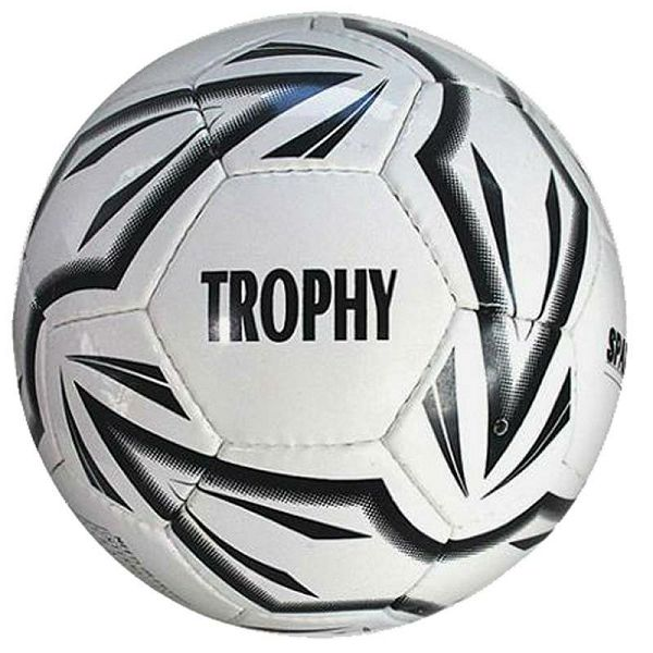 Trophy training ball 4