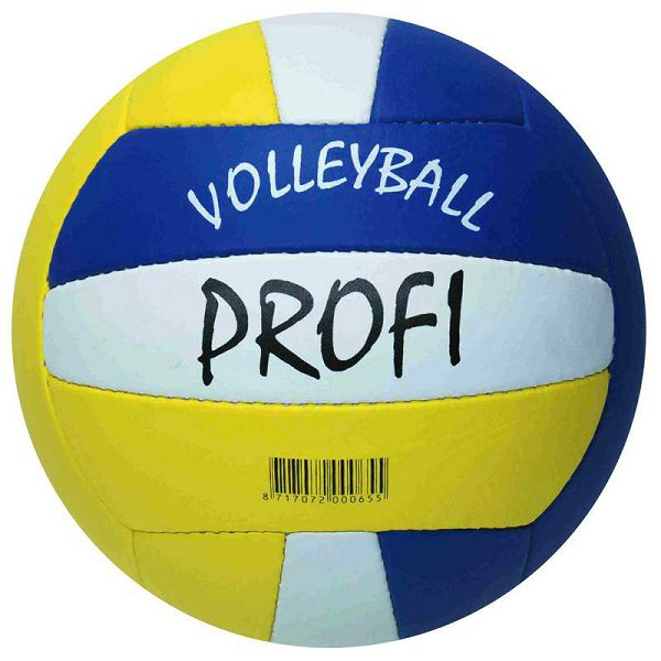 Volleyball Beach Profi